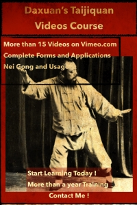 Taiji Training Complete forms, neigong and applications