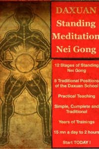 Standing Meditation Nei Gong - 8 Postures, 12 Stages