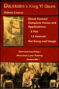 Xing Yi Quan - Internal Martial Arts & Neigong Training