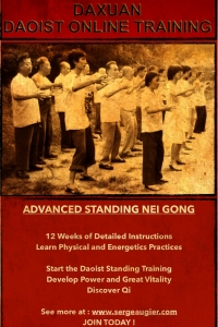 Advanced Standing Neigong to develop power and discover Qi