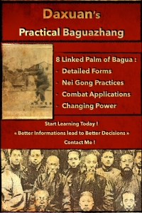 Bagua Zhang - Internal Martial Arts and Nei Gong